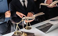 Direito Administrativo e Gestão Pública